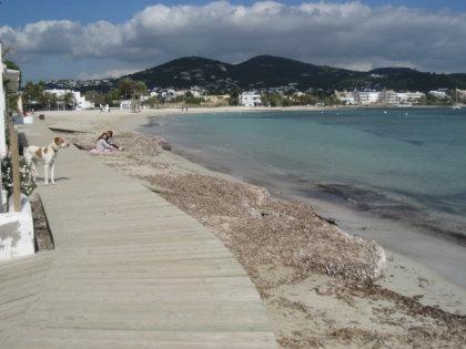 Talamanca. Playa